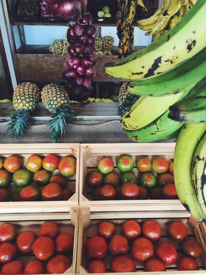comida orgánica en Costa Rica