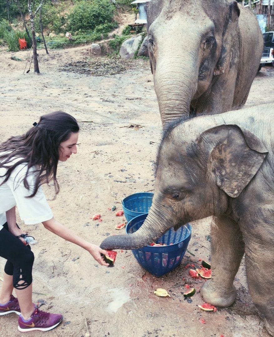 Thailand Honeymoon Highlights